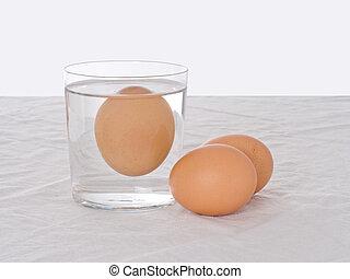 testar, fresco, ovos, -, podre, um, flutuante, em, water.,...