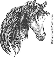 Horse of american quarter breed sketch portrait - Stately...