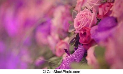Floral arrangement. Close up. Dynamic change of focus. Close...