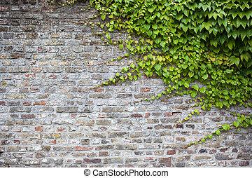 Tilable Stock Foto Beelden. 2.073 Tilable royalty-vrije beelden en ...