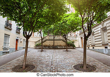 green trees on montmartre street in Paris, France