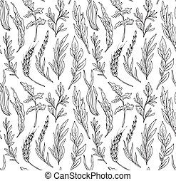 Vector seamless pattern with hand drawn herbs isolate on...