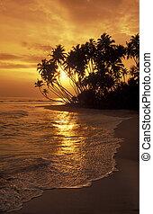 SRI LANKA HIKKADUWA BEACH - a beach at the coast of Hikaduwa...