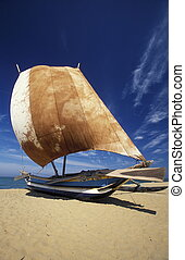 SRI LANKA NEGOMBO DHONI FISHINGBOAT - Dhoni Fishingboats at...