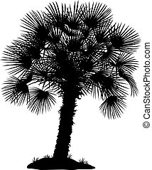 Palm Tree and Grass Silhouettes