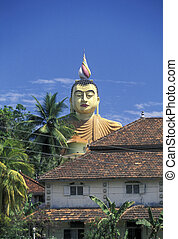 SRI LANKA WEHERAHENA BUDDHA TEMPLE - the Big Buddha at the...
