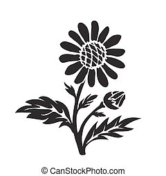 Leucanthemum oxeye daisy silhouette, hand drawn vector