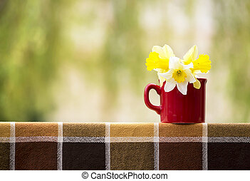 Easter flowers in spring - Beautiful Easter daffodil flowers...