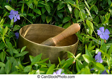 Singing Bowl and flowers cornflower - Metal singing bowl and...