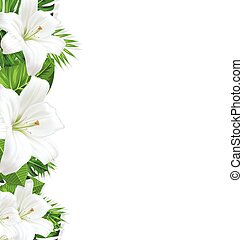 Frame branch tropical leaves and white flowers lily - Frame...