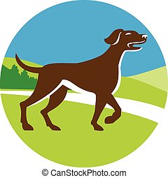 English Pointer Dog Pointing Up Circle Retro - Illustration...