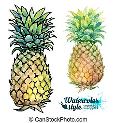 Watercolor painting vector fresh pineapples - Watercolor...