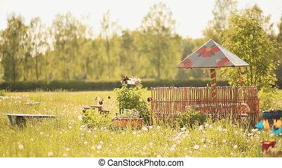 Rustic garden. Sunny summer day. - Rustic garden. Sunny...