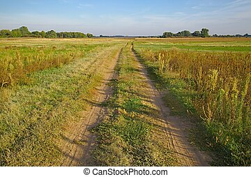 Dirtroad through a field - Dirtroad crossing the countryside...