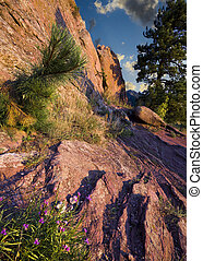 First Light on Red Rocks Trail - Dawn over red rocks and...