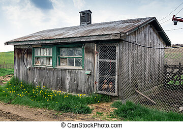 rustic old wodden chicken coop