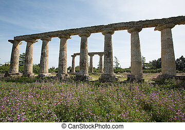 Palatine Tables, Metaponto - Palatine Tables, Hera Sanctuary...