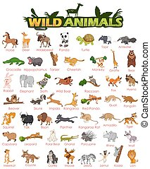 Wide variety of wild animals - Set of wide variety of wild...
