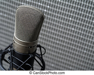 Condenser microphone and guitar amplifier