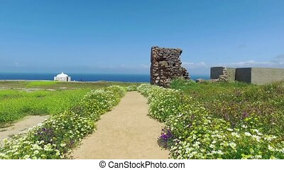 Walk Along the Path Surrounded by Flowers