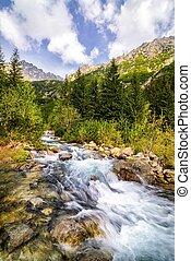 Mountain stream in the Polish mountains