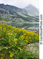The Fish Lake, Rila Mountain - landscape of The Fish Lake,...