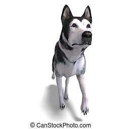 Alaskan Malamute Dog. 3D rendering with clipping path and...