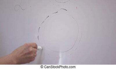 Woman Doctor is Drawing Female Eggs on flip board - Woman...