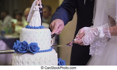 Cutting the wedding cake HD