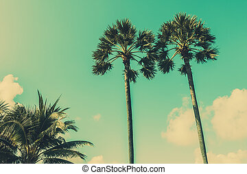 Coconut palm tree - Vintage coconut palm tree on sky...