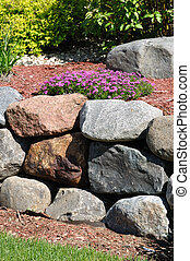 Stone Retaining Wall with Creeping Phlox Flowers
