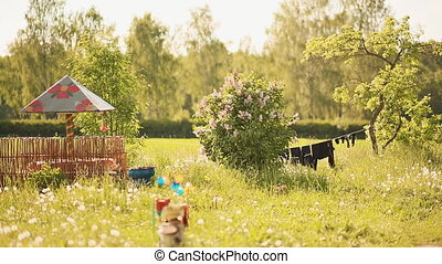 Rustic garden with drying clothes