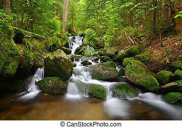 Waterfall on mountain creek - Waterfall in the national park...