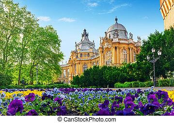 Vajdahunyad Castle (Hungarian-Vajdahunyad vara) is a castle...