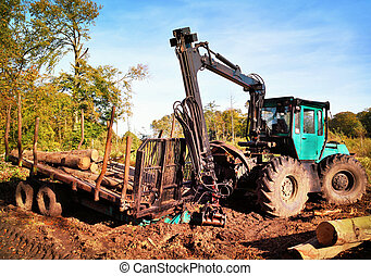Lumber industry, forestry tractor with tree trunks in an...