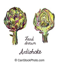 Artichoke hand drawn card set, artistic design - vector...