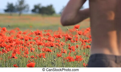 running on a poppy field - sport running on a poppy field in...