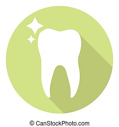 Tooth Molar Icon