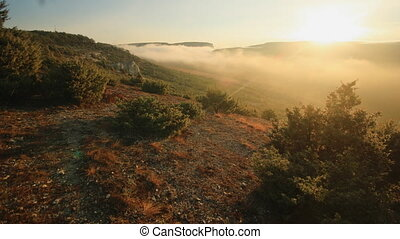 sunrise over the hill with juniper trees