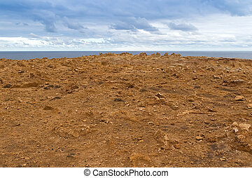 Landscape of coastal cliff at Petrified Forest Walk, Cape...