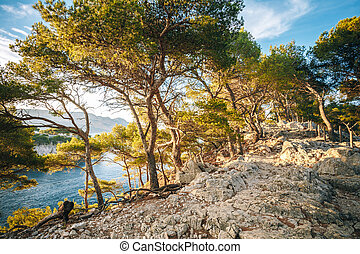 Hiking Trails Among Calanques On The French Riviera...
