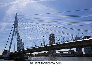 erasmus bridge in the centrer of rotterdam