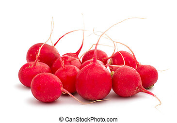 red radish isolated on white background
