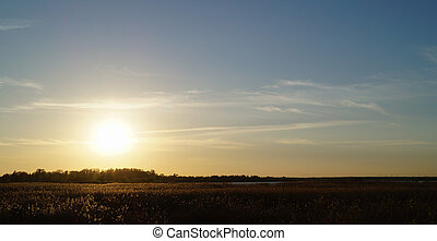 Nature sunset landscape view with the field
