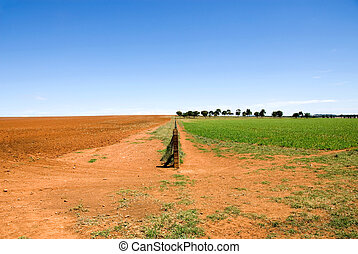 Rural Scene - A fence dividing two paddocks - one ploughed,...