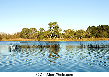 Wingecarribee River - Late Afternoon on the Wingecarribee...