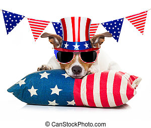 4th of july independence day dog - jack russell dog...