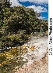 Geothermal river - Steaming thermal river Rotorua, Waimangu...