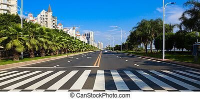 Cityscape of asian city viewed from zebra or pedestrian...