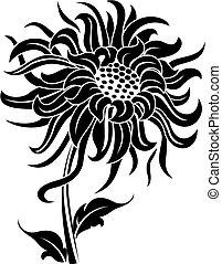 Black flower isolated on white for design